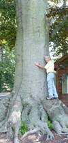 Tree Whisperer